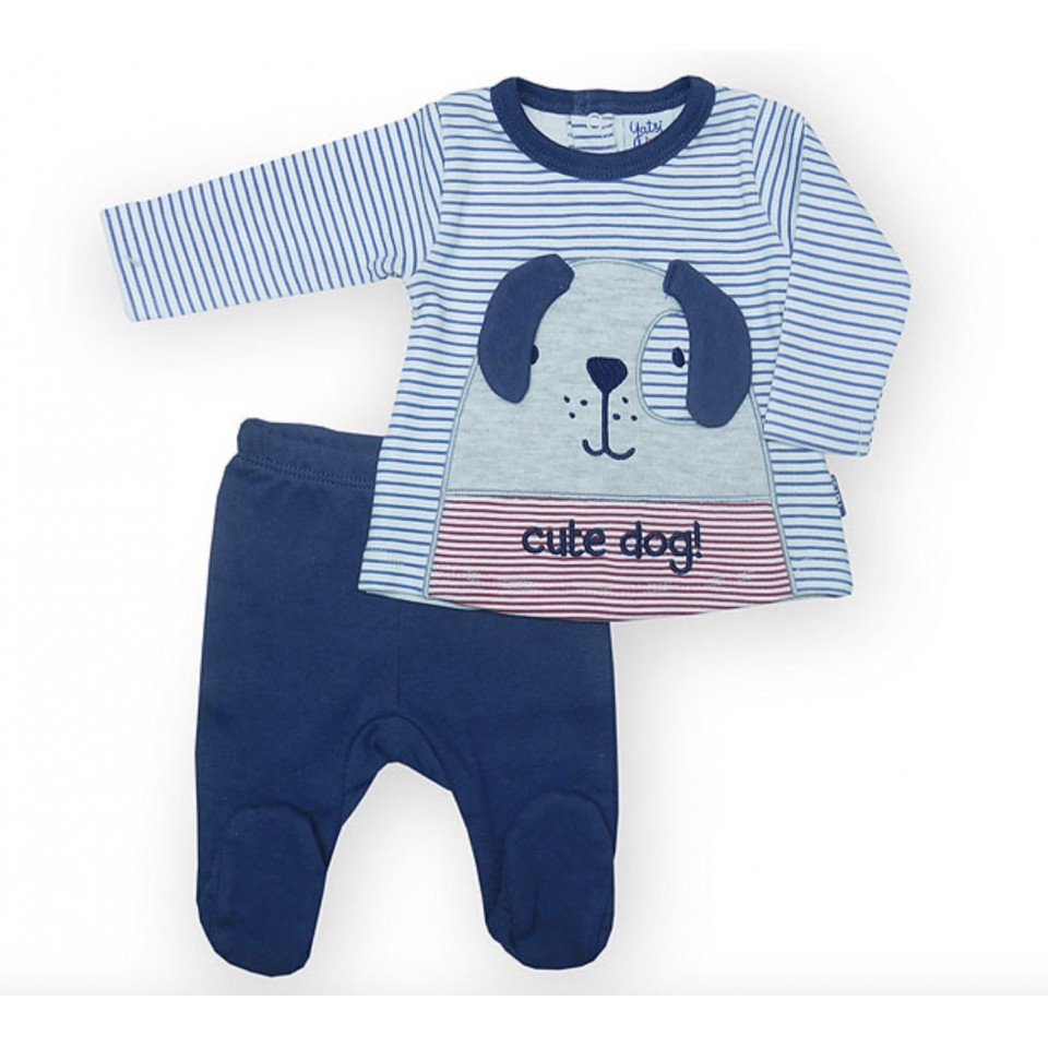 2-Piece dog jacket pant set